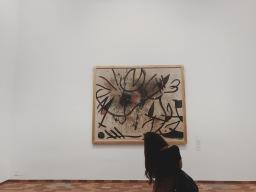 Fundación Miró, o el arte a media luz