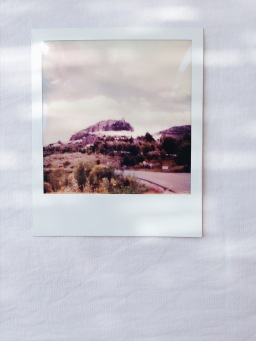 polaroids III